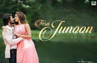 tera junoon song