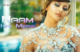 naam hai mera song - hate story iv