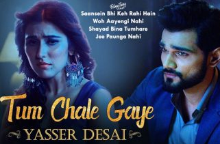 tum chale gaye lyrics album song