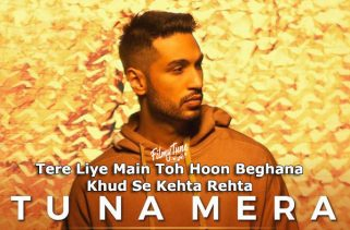 tu na mera lyrics album song